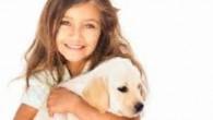 ABC Dog Team in collaborazione con Paco Giochi organizza un corso dedicato ai piccoli cinofili per imparare a giocare, a prendersi cura ed a rapportarsi al meglio con gli amicia...